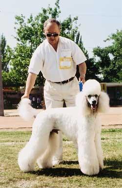 http://www.kutya.hu/0109/images/04-2.jpg
